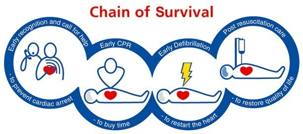 The CPR Chain of Survival